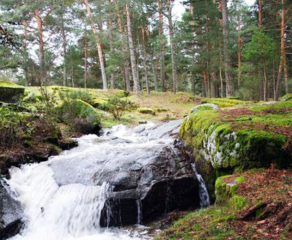Curso natural de un rio